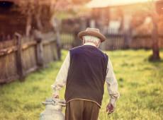 Reforma da previdência rural: Efeitos da nova medida também afeta trabalhadores do campo