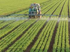 """Governo libera um agrotóxico por dia e aprova comércio de produtos """"extremamente tóxicos"""""""
