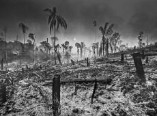 Fotografias provam vertiginoso avanço da destruição de áreas da Amazônia Brasileira