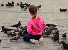 Ratazanas com asas: As pombas são uma ameaça real ao patrimônio histórico e cultural