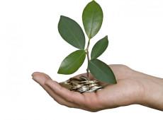 """O que se entende por """"financeirização da natureza""""?"""