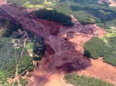 Balanço crítico: Um mês do crime ambiental da vale em Brumadinho, Minas Gerais