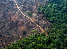 """Com a """"oferta"""" da Amazônia aos EUA, Bolsonaro põe futuro dos indígenas em risco"""