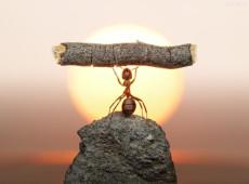 Pequenas mudanças são grandes transformações, mas é preciso força de vontade