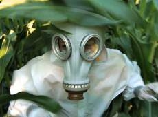 Monsanto e latifundiários argentinos semeiam o horror