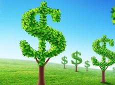 O que são commodities ambientais e como podem ajudar o desenvolvimento sustentável?