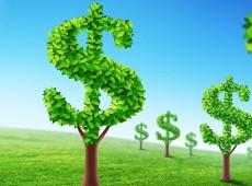 Análise crítica à economia verde e créditos ambientais