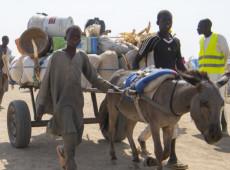 Fronteira Níger-Nigéria: terrorismo e violência provocaram deslocamento de 40 mil em 2019