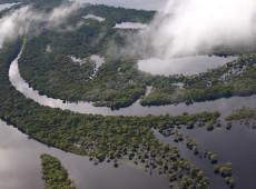 Aquecimento e desmate podem cortar Amazônia pela metade em 2050, aponta estudo