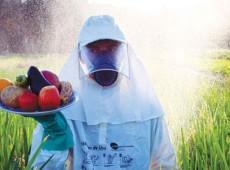 """Agrotóxicos: """"Se substância é cancerígena, não há limite de exposição que não cause câncer"""""""