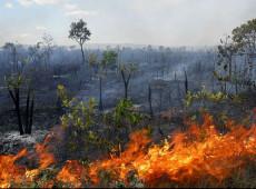 Região do Matopiba concentra mais da metade das queimadas do Cerrado brasileiro