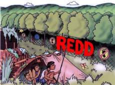 Mercantilização e financeirização: A Sebraelização do Indigenismo na Amazônia